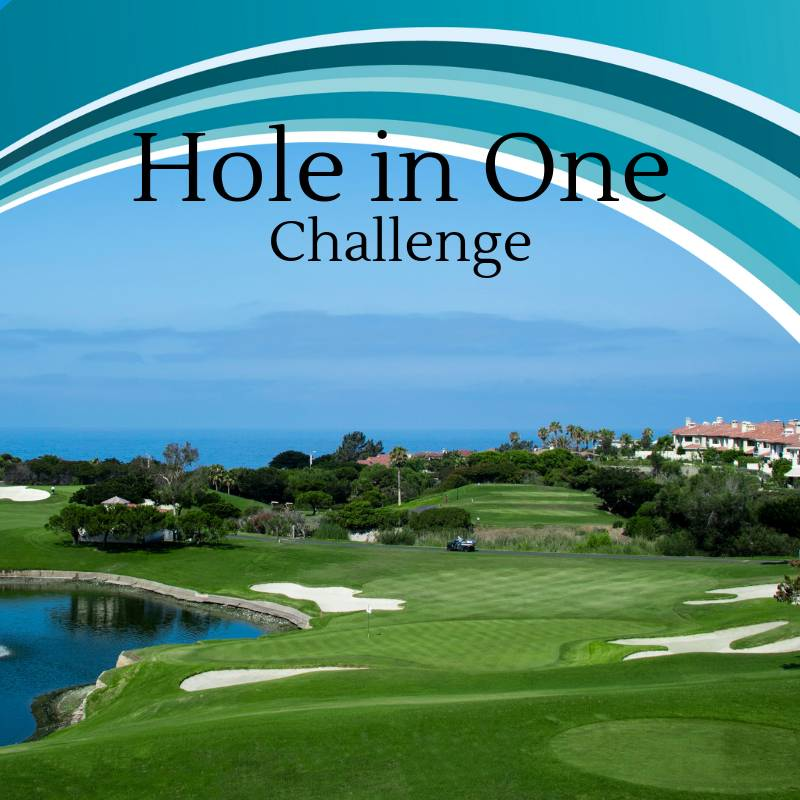 Hole in One Challenge